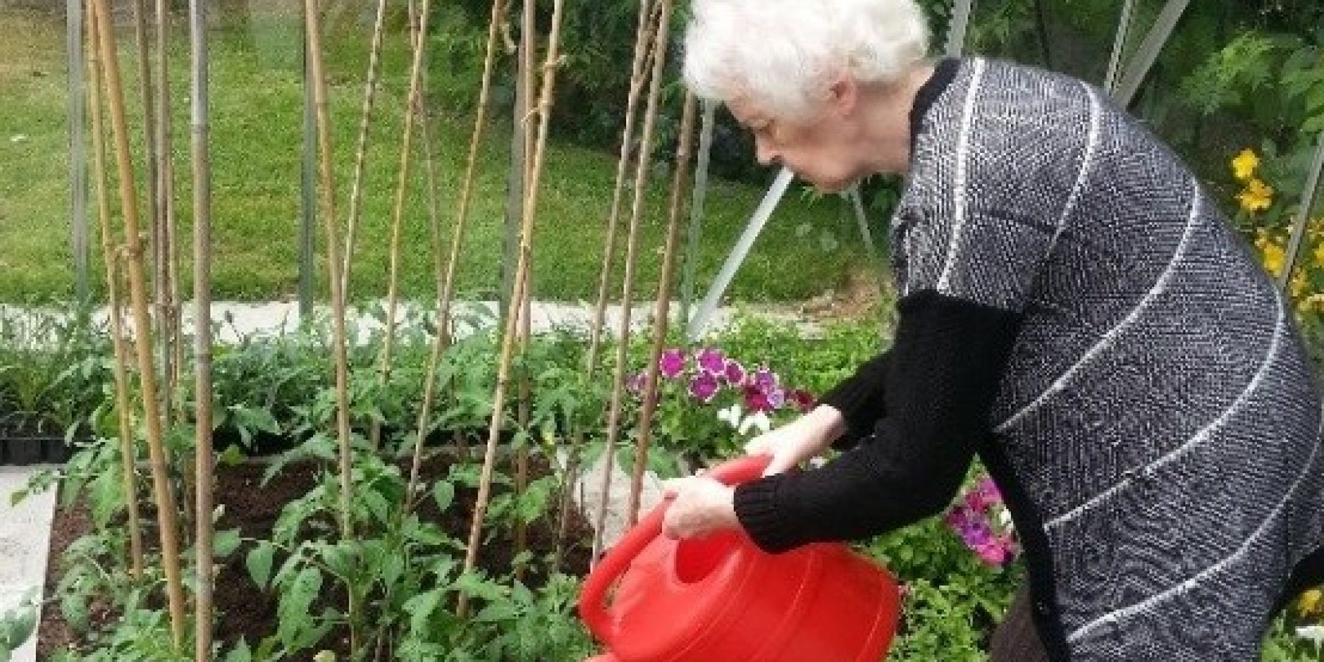 Gardening with Dementia at Croxley House