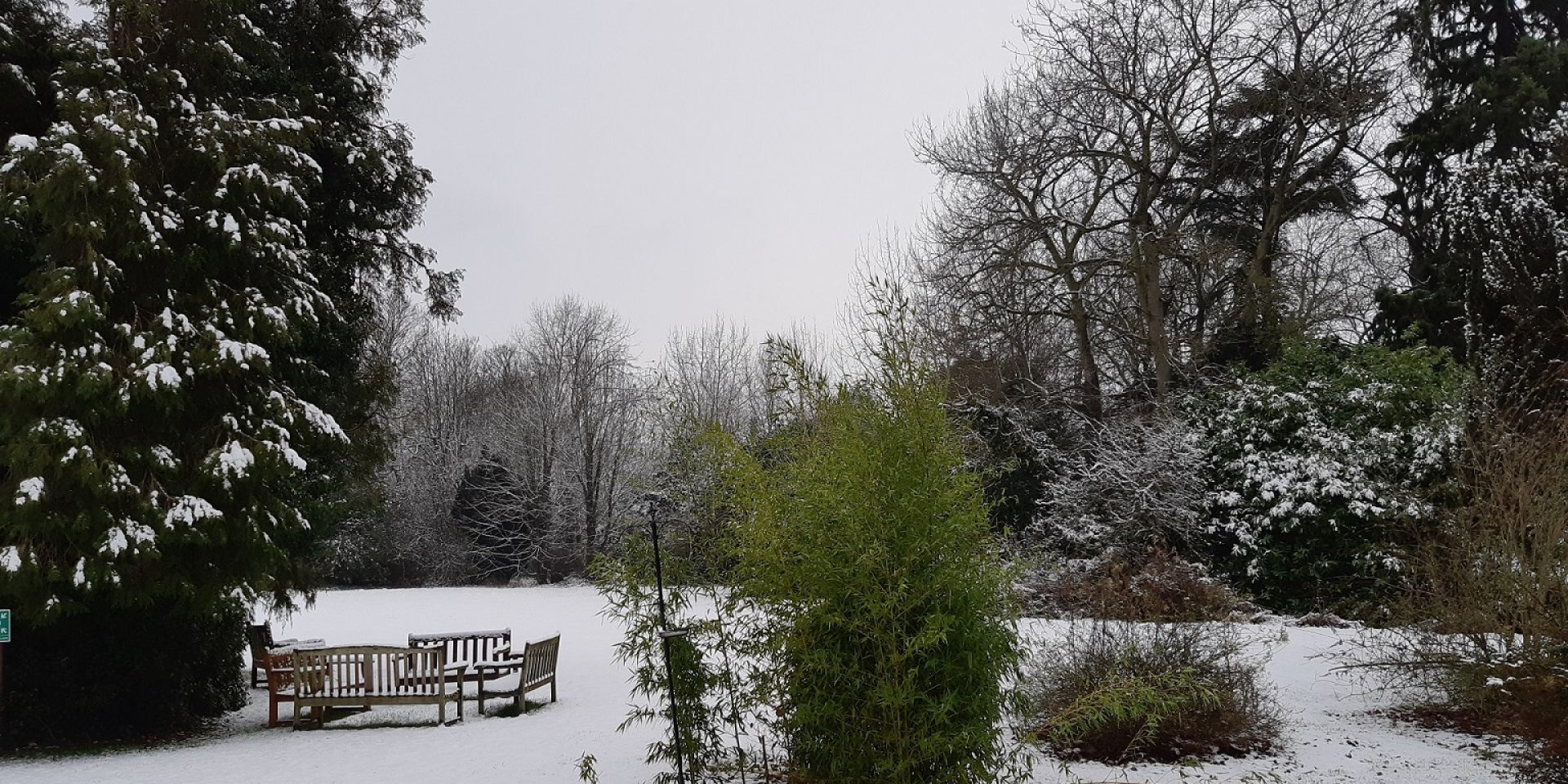 Snow covers the grounds at Tickford Abbey Care Home